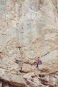Israel, Jordan Valley, Wadi Qelt (Wadi Perat) rock climbing