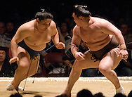 Asasekiryu (left) and Hakuho compete in the semi-final round of Day 1 of Grand Sumo Tournament Los Angeles 2008, Los Angeles Sports Arena, Los Angeles, California