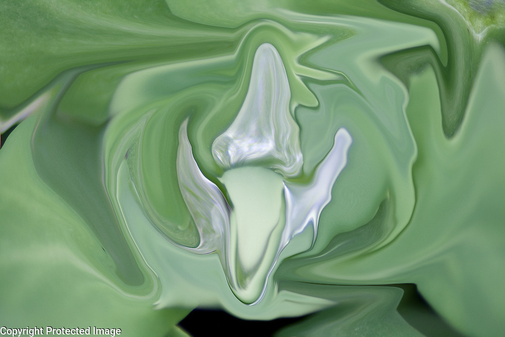 white abstractios. Fluid white shapes on green dominant with many shades on fluid green background.