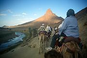 Camel trekking in Sahara desert, Zagora, Morocco