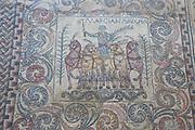Charioteer mosaic, Museo Nacional de Arte Romano, national museum of Roman art, Merida, Extremadura, Spain