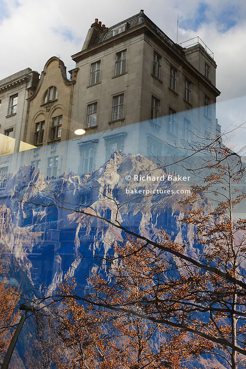 The imagery of the great outdoors from London shop seen against the urban environment