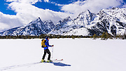 Backcountry skier under the Tetons, Grand Teton National Park, Wyoming USA