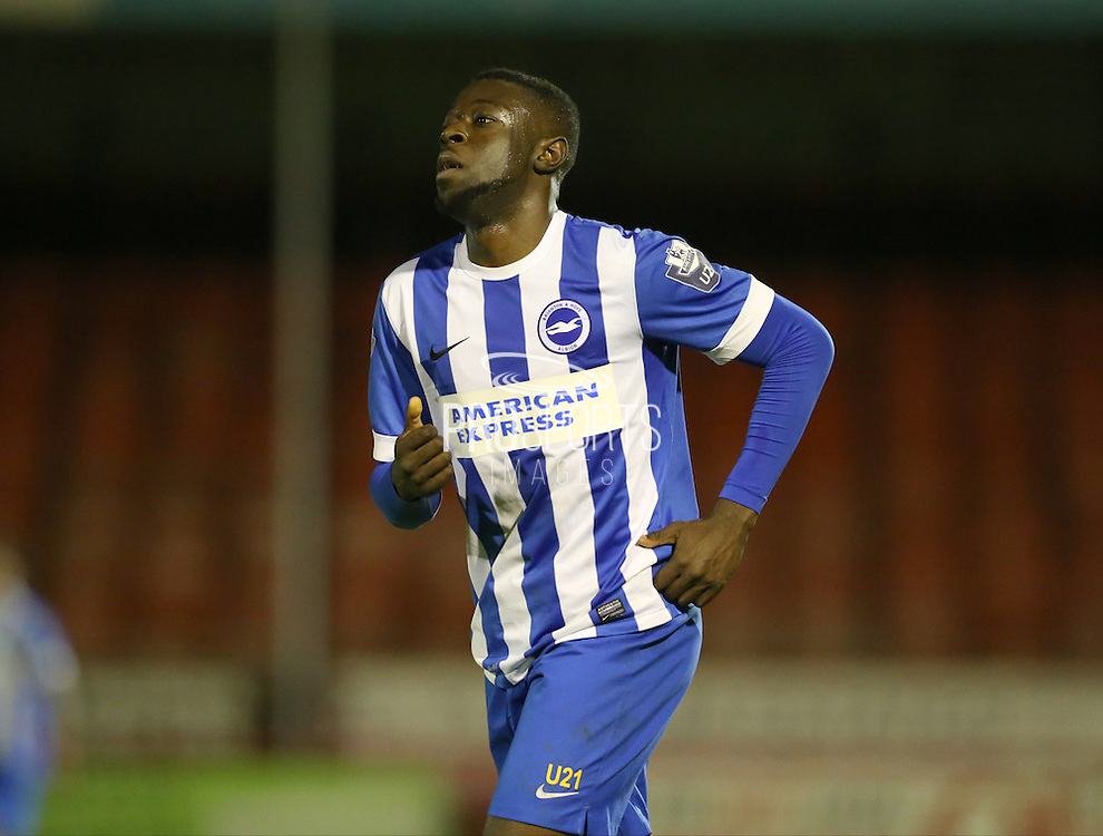 Daniel Akindayini, Brighton striker during the Barclays U21 Premier League match between Brighton U21 and U21 West Bromwich Albion at the Checkatrade.com Stadium, Crawley, England on 25 January 2016.