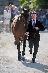 Whittington Francis, (GBR), Hasty Imp<br /> CCI4* - Mitsubishi Motors Badminton Horse Trials 2016<br /> © Hippo Foto - Jon Stroud<br /> 06/05/16