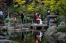 © Licensed to London News Pictures. 02/04/2021. LONDON, UK.  People visit the Kyoto Garden in Holland Park, west London on Good Friday. Usually, the garden is a quiet but as it is a public holiday and with lockdown restrictions slightly eased this week, many people have taken to the parks to enjoy the warmer conditions.  Photo credit: Stephen Chung/LNP