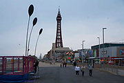 The famous tourist attraction Blackpool Tower on the Promenade at dusk in Blackpool, Lancashire, England. It was inspired by the Eiffel Tower in Paris and opened in 1894. It is 518 feet tall.