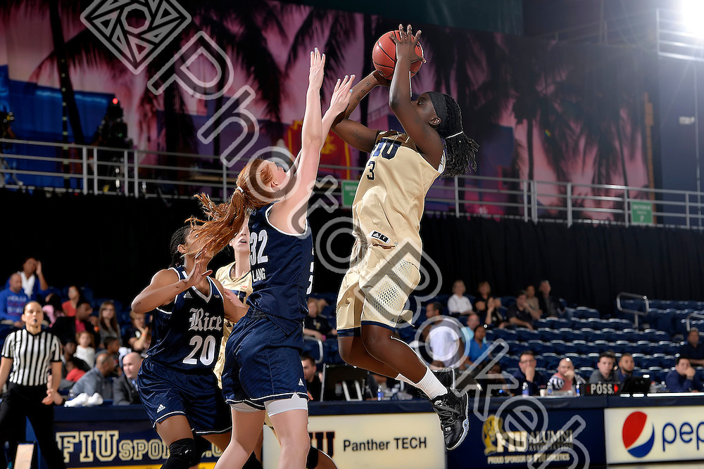 2016 February 20 - FIU's Tianah Alvarado (3). <br /> Florida International University fell to Rice, 62-68, at FIU Arena, Miami, Florida. (Photo by: Alex J. Hernandez / photobokeh.com) This image is copyright by PhotoBokeh.com and may not be reproduced or retransmitted without express written consent of PhotoBokeh.com. ©2016 PhotoBokeh.com - All Rights Reserved