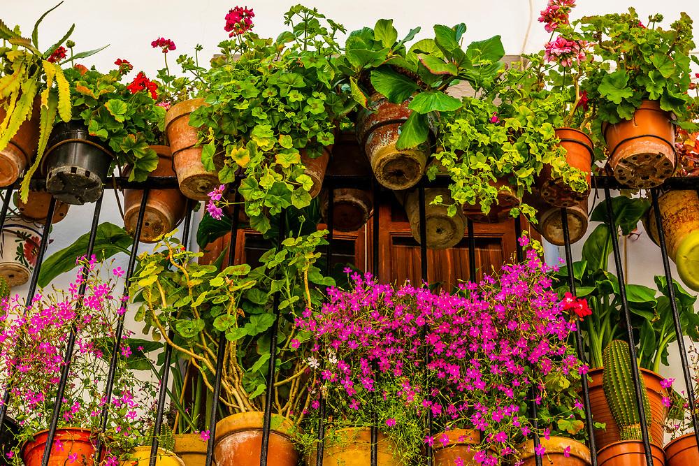 Flower pots on a balcony, Alhama de Granada,Granada Province, Andalusia, Spain.