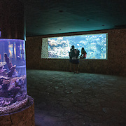Underwater aquariums filled with local marine life at Xcarat Maya theme park south of Cancun and Playa del Carmen on Mexico's Yucatana Peninsula.