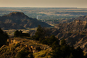 Glendive, Montana.
