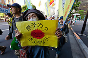 an older woman at an Anti nuclear protest. Tokyo, Japan Sunday June 2nd 2013
