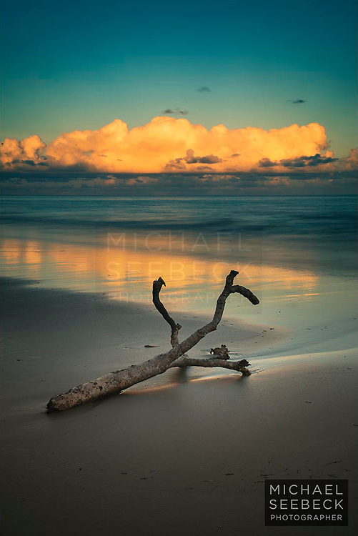 Sunset on Thornton Beach, with driftwood in the foreground.<br /> <br /> Limited Edition Print