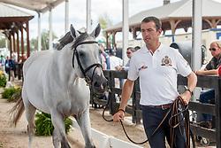 Wathelet Gregory, BEL, Mjt Nevados S<br /> World Equestrian Games - Tryon 2018<br /> © Hippo Foto - Sharon Vandeput<br /> 17/09/2018