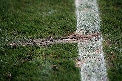 31.03.2010, Weserstadion, Bremen, GER, Training Werder, im Bild Feature. Rasen. Zertreten. Erde. EXPA Pictures © 2010, PhotoCredit: EXPA/ nph/  Arend / SPORTIDA PHOTO AGENCY