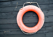 Orange life saving ring on black shed wall, Felixstowe Ferry, Suffolk, England