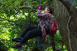 A tree protector from HS2 Rebellion descends from a mature oak tree in Denham Country Park on 8 September 2020 in Denham, United Kingdom. Anti-HS2 activists continue to try to prevent or delay works on the controversial £106bn project for which the construction phase was announced on 4th September from a series of protection camps based along the route of the line between London and Birmingham.