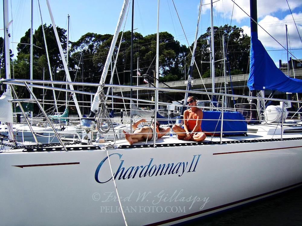 Chardonnay II ~ Santa Cruz ~ 5266
