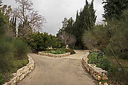 The Jerusalem Botanical Gardens is a gem in the heart of Jerusalem. It serves as an education, learning and research center, holds a diverse collection of plants from around the world which are displayed geographically and is a destination for tourism, recreation and cultural events. At around 30 acres, the Jerusalem Botanical Gardens is the largest in Israel. There are over 6,000 species and varieties of plants from around the world displayed in 6 phyto-geographical sections – Southern Africa, Europe, North America, Australia, South-West and Central Asia and the Mediterranean.