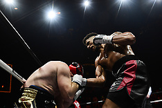 Tony Yoka  vs Cyril Leonet - 07 April 2018