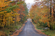 scenic country road in the fall