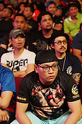 """Spectators watching the fight<br /><br />MMA. Mixed Martial Arts """"Tigers of Asia"""" cage fighting competition. Top professional male and female fighters from across Asia, Russia, Australia, Malaysia, Japan and the Philippines come together to fight. This tournament takes place in front of a ten thousand strong crowd of supporters in Pelaing Stadium. Kuala Lumpur, Malaysia. October 2015"""