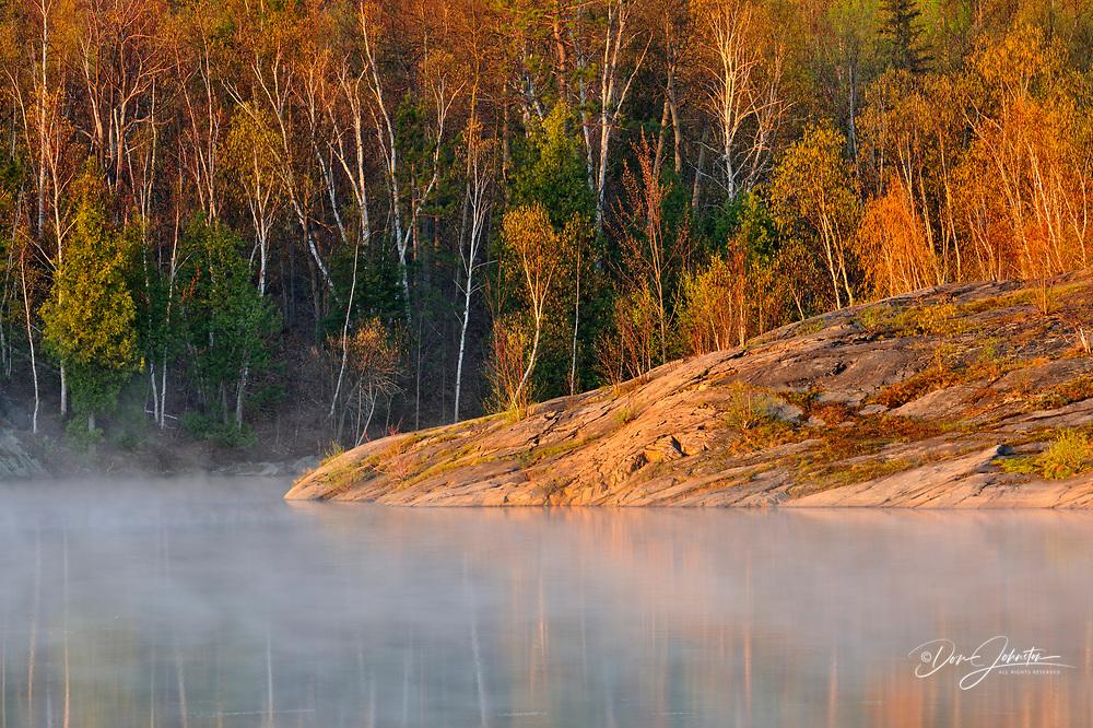 Spring foliage in the fog along the shores of Simon Lake, Greater Sudbury (Naughton), Ontario, Canada