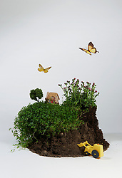 Model of house on soil with digger and butterflies (Credit Image: © Image Source/Taira Kunihara/Image Source/ZUMAPRESS.com)