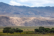 Inyo Mountains near Lone Pine, Owens Valley, Inyo County, California, USA