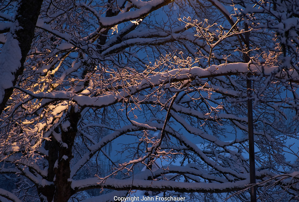 Snow falling in Tacoma, Wash., Monday, Feb. 11, 2019. (Photo: John Froschauer)