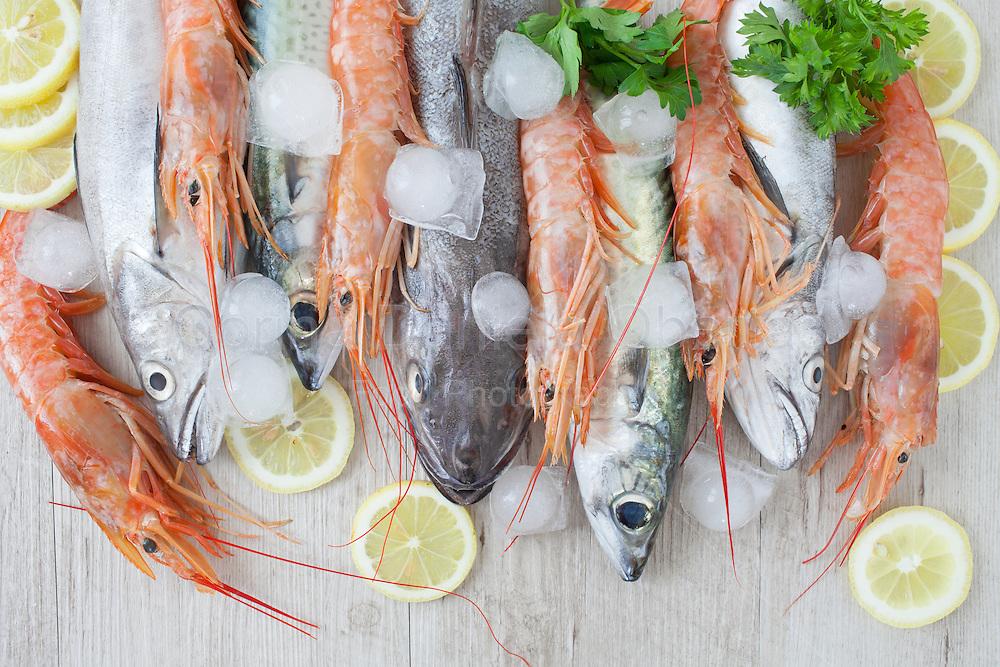 Assortment of fresh fish on ice mackerel codfish and prawns
