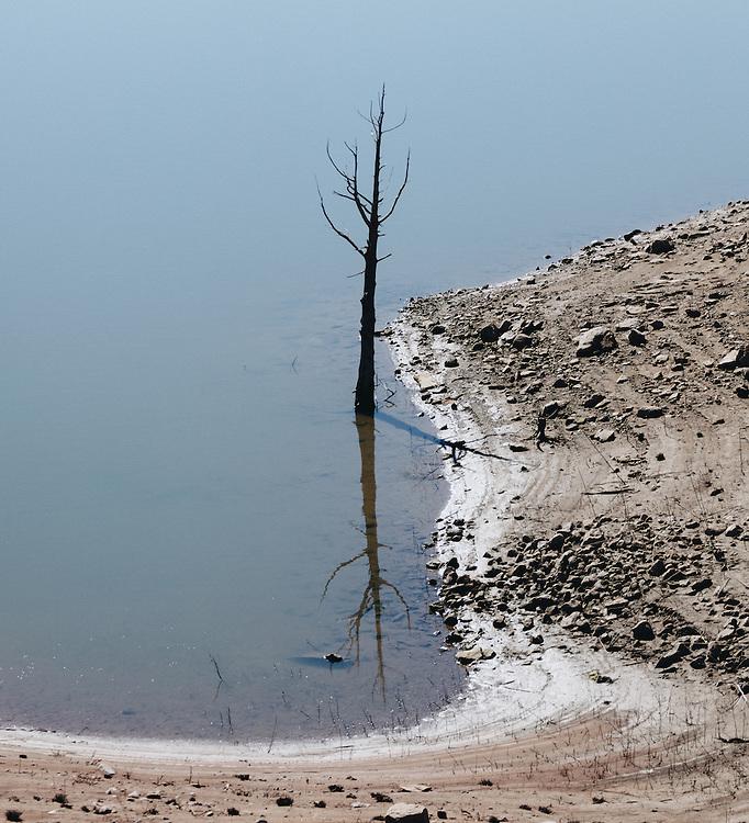 http://Duncan.co/lone-dead-tree-in-water