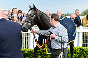 Dark Shadow ridden by Hector Crouch and trained by Clive Cox in the Value Rater Racing Club Is Free Handicap race.  - Mandatory by-line: Ryan Hiscott/JMP - 01/05/2019 - HORSE RACING - Bath Racecourse - Bath, England - Wednesday 1 May 2019 Race Meeting