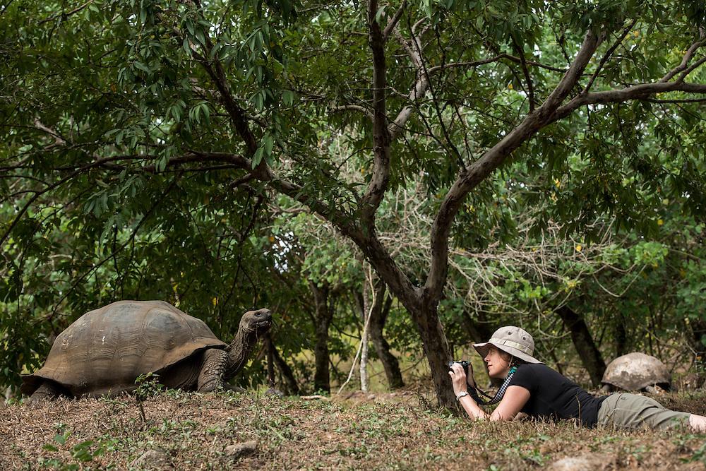 Model with Galapagos Giant Tortoise<br /> KT 006 Sonia Kraemer D'Annunzio<br /> El Chato Ranch<br /> Santa Cruz<br /> Galapagos<br /> Ecuador, South America