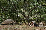 Model with Galapagos Giant Tortoise<br /> KT 006 Sonia Kraemer D'Annunzio<br /> El Chato Ranch<br /> Santa Cruz<br /> Galapagos<br /> Ecuador, South America