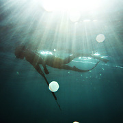 A diver gathers his breath, preparing for another dive under the sun's rays filtering through the ocean water.