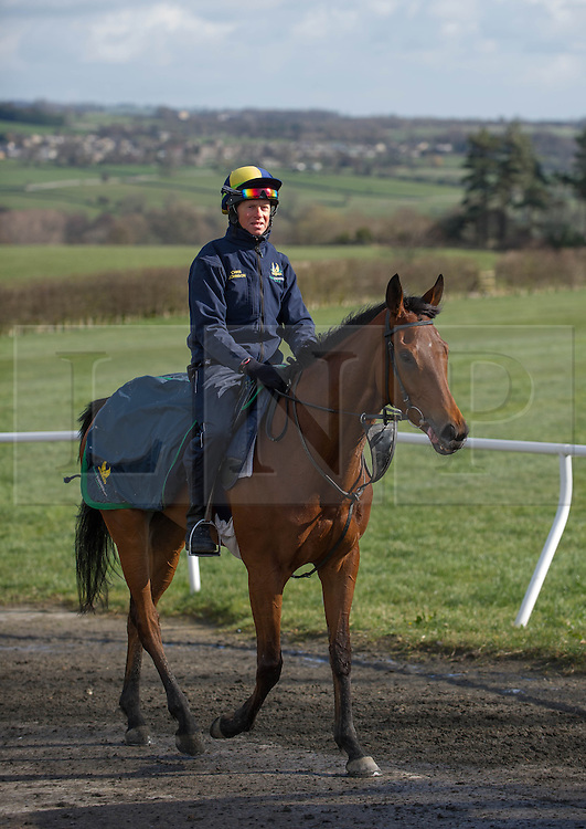 © Licensed to London News Pictures. 22/03/2014<br /> <br /> Middleham, North Yorkshire<br /> <br /> Chris Johnson exercises one of the horses at the Mark Johnston stables in Middleham, North Yorkshire. Race horses have been trained in Middleham for over 200 years using the extensive gallops on the high moor. There are currently 15 stables based around the small Yorkshire village.<br /> <br /> Photo credit : Ian Forsyth/LNP