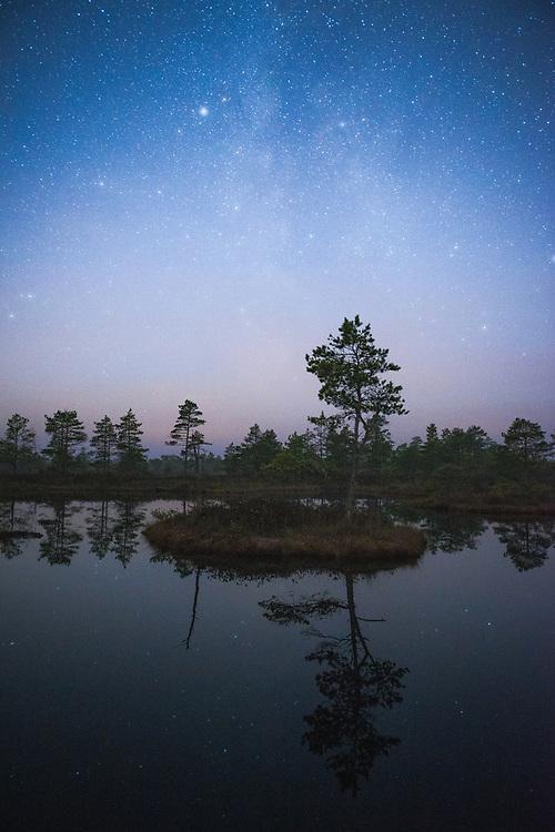 Small island with a lone pine tree floating in bog-pool on clear night with Milky Way in backgroung, Kemeri National Park (Ķemeru Nacionālais parks), Latvia Ⓒ Davis Ulands   davisulands.com