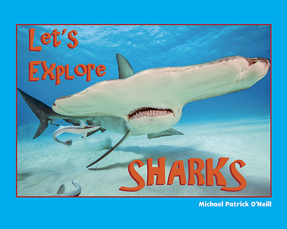 Dive – if you dare – into the wonderful world of sharks!<br /> <br /> Let's Explore Sharks introduces children to these mysterious and often misunderstood ocean hunters.<br /> <br /> The most feared and favorite sharks – the great white, tiger and hammerhead, among others – come to life in spectacular photographs, and fun, informative text that explain in a basic level shark biology, behavior and conservation.<br /> <br /> Let's Explore Sharks encourages elementary school children to read, become involved in conservation and science, and serves as an ideal springboard for classroom discussion and projects.<br /> <br /> ISBN 978-0-9728653-1-9<br /> 8.5 x 11 inches (landscape)<br /> Hardcover with dust jacket; 32 pages<br /> Ages 4-10