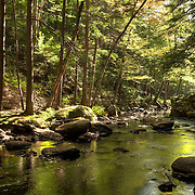 The Lawrence Brook below Doane's Falls in the North Quabbin Region of Massachusetts, is managed by The Trustees of Reservations