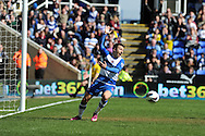 Reading's Adam Le Fondre appeals after he feels his header at goal  had crossed the line. Barclays Premier league, Reading v Southampton at the Madejski stadium in Reading on Saturday 6th April 2013. pic by Andrew Orchard, Andrew Orchard sports photography,