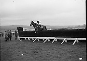 """Jameson Gold Cup At Punchestown.     (N72)..1981..29.04.1981..04.29.1981..29th April 1981. .The Jameson Gold Cup at Punchestown,Naas ,Co Kildare,was won today by """"Owens Image"""" owned by Mrs Rosemary Garvey. The horse was ridden by Mr F Berry and was trained by Mr P Hughes. Mrs Betty Bohan,wife of Mr Eddie Bohan,Past President,Vitners Federation of Ireland,made the presentation of The Gold Cup after the race..Picture shows """"Owens Image"""",ridden by Mr F Berry,clearing the last fence on the way to winning the Jameson Gold Cup."""