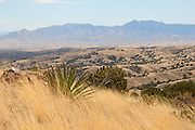 The view to the northeast from the grasslands of the eastern foothills of the Santa Rita Mountains of the Sonoran Desert in Arizona, USA.