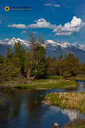 Mission Creek at the National Bison Range in Moiese, Montana, USA