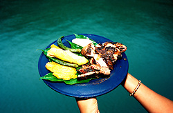 Jamaica: Local food, jerked meat. photo: jamaic103 .Photo copyright Lee Foster, www.fostertravel.com, 510/549-2202, lee@fostertravel.com