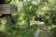 children treehouse in wooded area