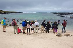 People Photographing Galápagos Sea Lions, San Cristóbal