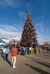 California: San Francisco Christmas celebration, Pier 39. Christmas tree and ornanents. Photo copyright Lee Foster.  Photo # 32-casanf76024