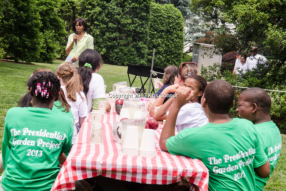 First Lady Michelle Obama joins students from Sarah Moore Greene Magnet Technology Academy School, Knox County, TN and with other school children from across the countryharvested the White House Kitchen Garden for the fifth year in a row at the White House on May 28, 2013 in Washington DC. Photo by Kris Connor