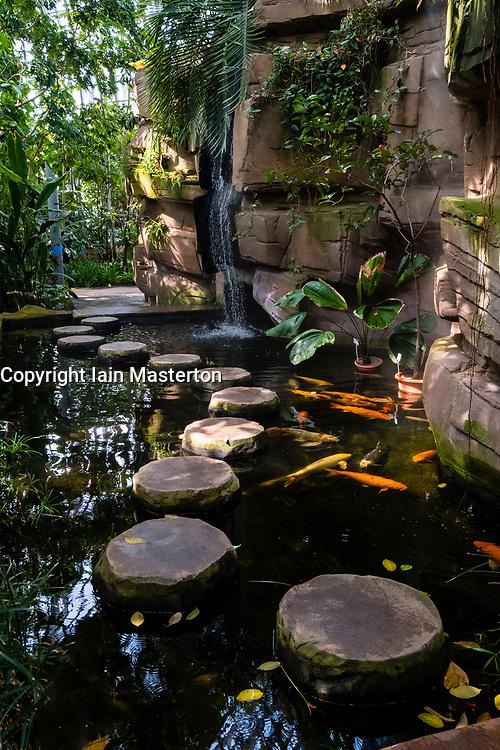 Fish pond inside tropical greenhouse Berlin Botanical Garden in Dahlem, Berlin, Germany